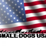 smalldogsusa social