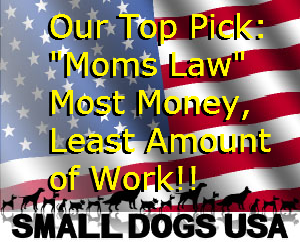 small-dogs-usaTopPick300x250flag