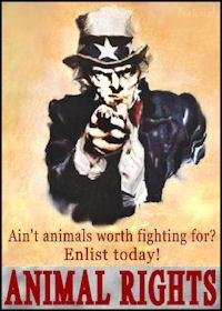 animal rights eBook