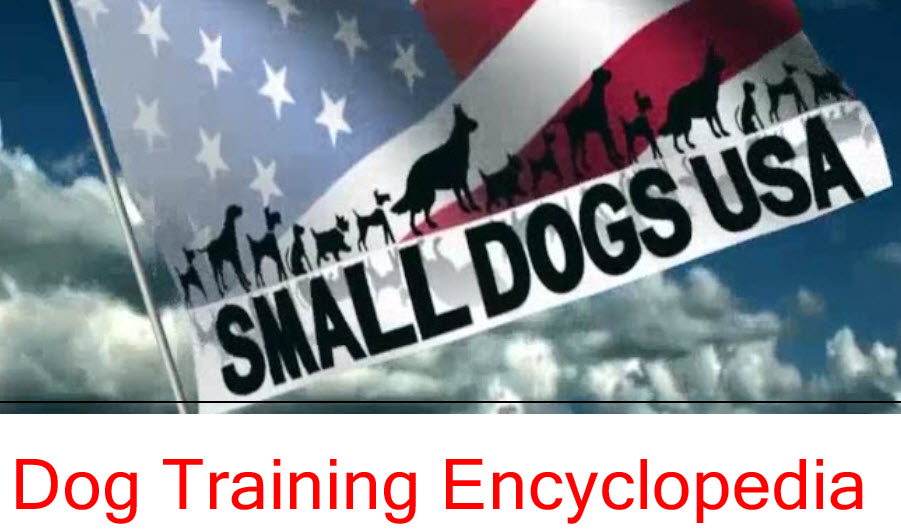 Dog Training Encyclopedia 2016